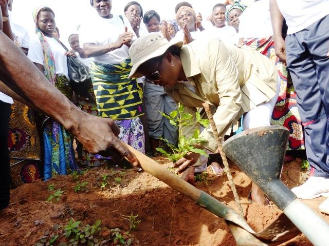 Des femmes du secteur informel en train de planter des arbres